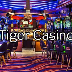 red tiger casino slot